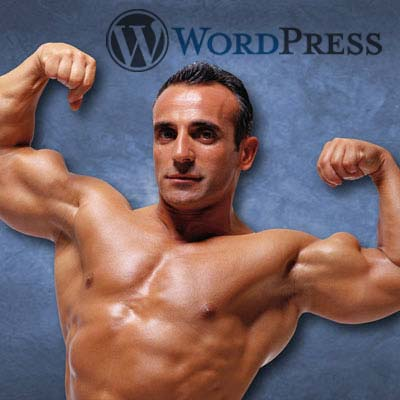 Why WordPress is the most powerful website option for your business.